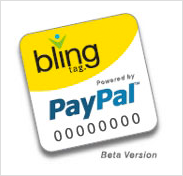 PayPal and Bling Nation