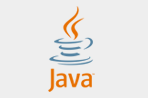 Who leads the Java parade?