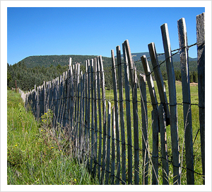 Fence Friday by DayTripper Tom, on Flickr